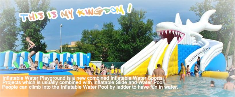 New Design Inflatables